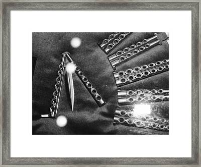 Framed Print featuring the photograph A Mind Over by Steven Macanka