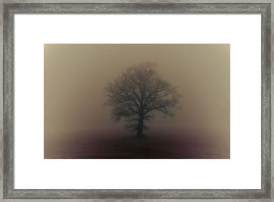 A Misty Morning Framed Print by Chris Fletcher