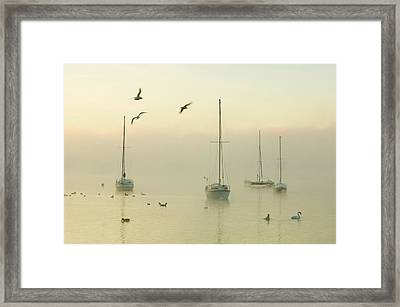 A Misty Morning Over Lake Windermere Framed Print by Ashley Cooper