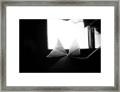 A Moment Alone Framed Print