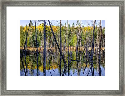 A Moment For Reflection. Framed Print by Rob Huntley