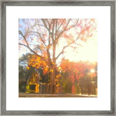 A Morning Dream Framed Print