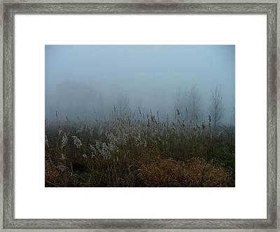 A Morning Fog Framed Print