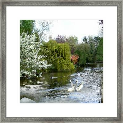 A Morning In Spring Framed Print by Morag Bates