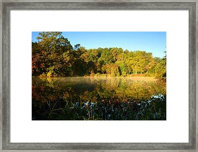 A Morning To Reflect Framed Print by Angie Tirado