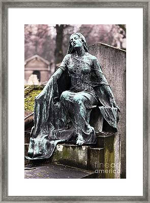 A Mothers Devotion Framed Print by John Rizzuto