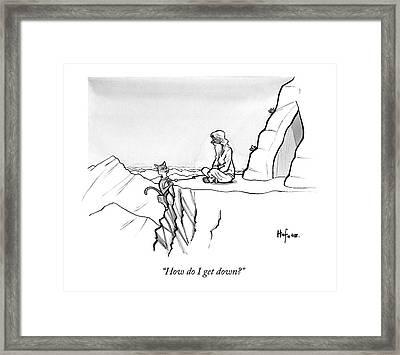 A Mountain Lion Hangs Off A Cliff Framed Print