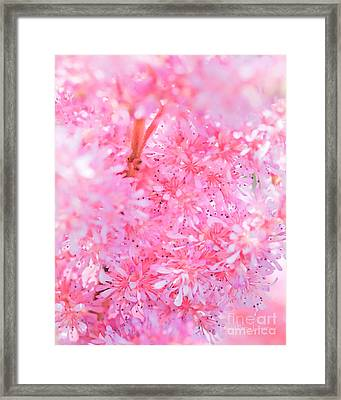 A Natural Pink Bouquet Framed Print