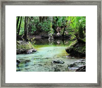 A Natural Spring Framed Print by Nancy Greenland