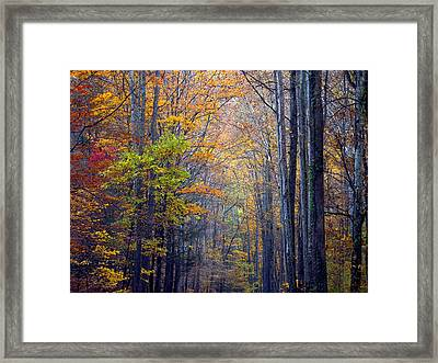 A Nature Painting Framed Print