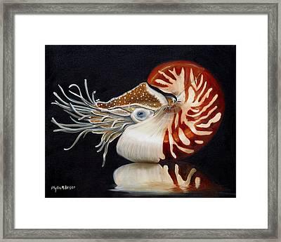 A Nautilus Study Framed Print by Phyllis Beiser