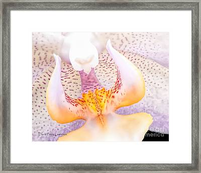 A Neighbors Orchid Framed Print