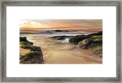 A New Day Framed Print by Andrew Raby
