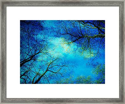 A New Day Framed Print by Angela Bruno