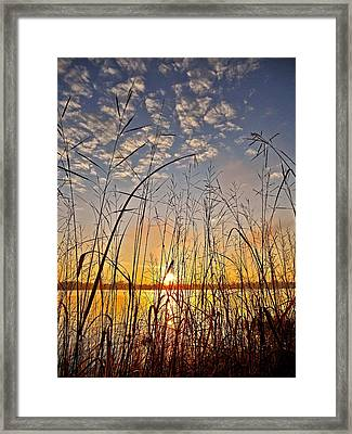 A New Day Begins ... Framed Print