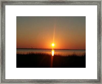 Framed Print featuring the photograph A New Day Is Born by Joetta Beauford