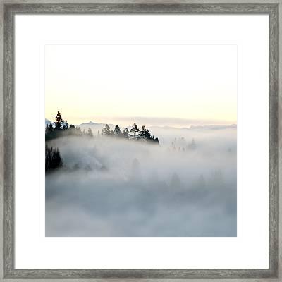 A New Day Framed Print by Lisa Knechtel