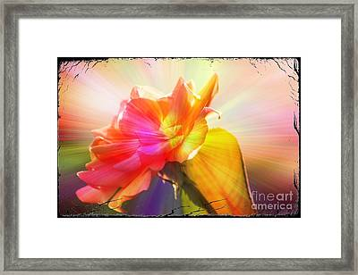 Framed Print featuring the photograph A New Day by Lori Mellen-Pagliaro