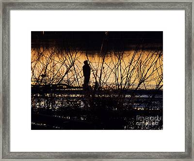 Framed Print featuring the photograph A New Day by Robyn King