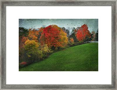 A New England Autumn Framed Print