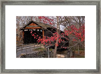 A New Season Framed Print by Kathy Jennings
