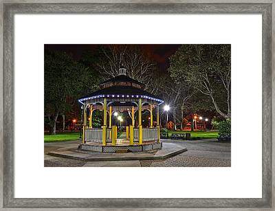 A Night In The Park Framed Print by Frozen in Time Fine Art Photography