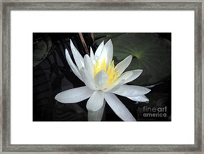 A Night Of Love Framed Print by Renee Trenholm