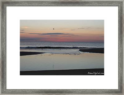 Framed Print featuring the photograph A One Seagull Sunrise by Robert Banach