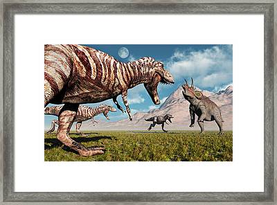 A Pack Of T-rex Dinosaurs Moving Framed Print