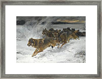 A Pack Of Wolves Framed Print by Alfred Wierusz Kowalski