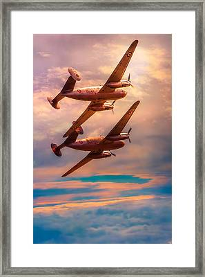 Framed Print featuring the photograph A Pair Of Flamingos by Chris Lord