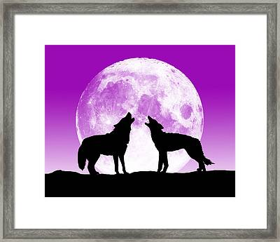 A Pair Of Howlers Framed Print by Peter Stevenson