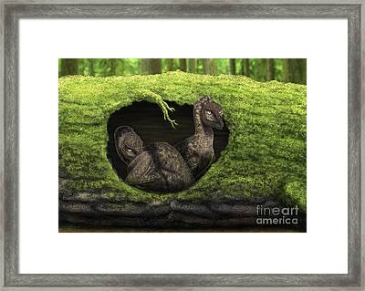 A Pair Of Juvenile Troodons Framed Print by Alvaro Rozalen