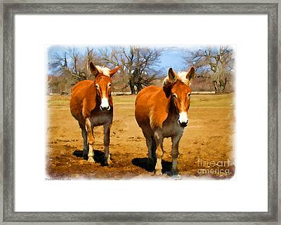 A Pair Of Mules  Digital Paint Framed Print