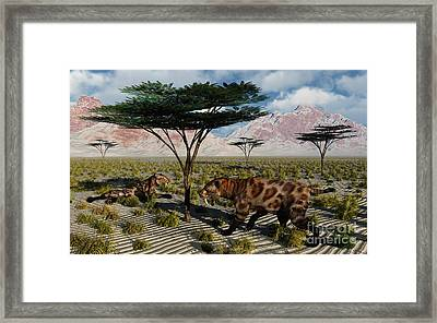 A Pair Of Sabre-toothed Cats Resting Framed Print by Mark Stevenson
