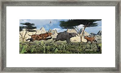 A Pair Of Sabre-toothed Tigers Chasing Framed Print by Mark Stevenson