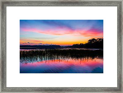 A Palette Of Colors Framed Print