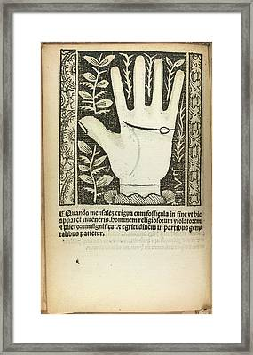 A Palm Framed Print by British Library