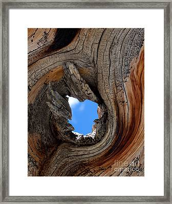 A Patch Of Blue Framed Print by Jim Garrison