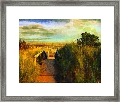 A Path To The Beach Framed Print