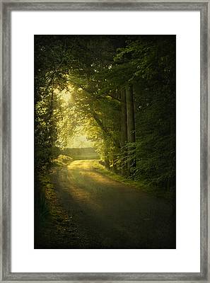 A Path To The Light Framed Print by Evelina Kremsdorf
