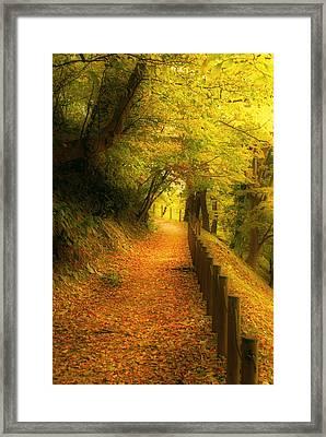 A Path Well Chosen Framed Print