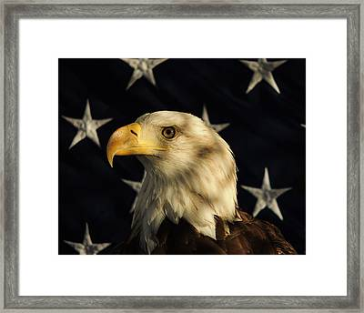 A Patriot Framed Print by Raymond Salani III