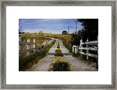 A Peaceful Path Framed Print