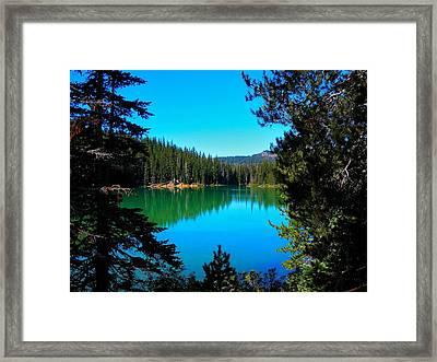 A Peek Through Framed Print by Kelly Mac Neill
