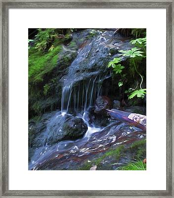 A Picture Of Fresh Spring Run Off. Framed Print