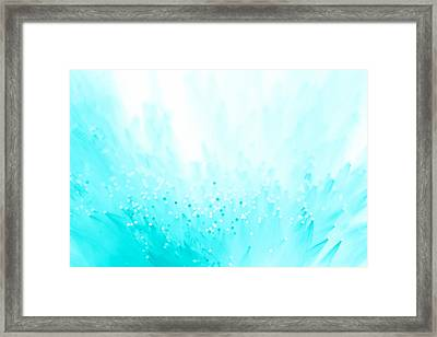 Framed Print featuring the photograph A Pillow Of Winds by Dazzle Zazz