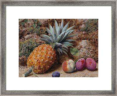 A Pineapple A Peach And Plums On A Mossy Bank Framed Print