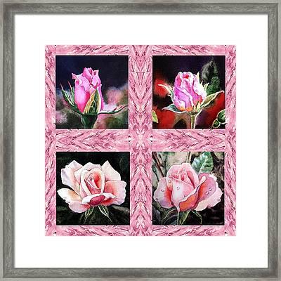 A Pink Quartet Of Single Roses Framed Print