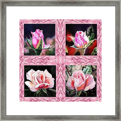 A Pink Quartet Of Single Roses Framed Print by Irina Sztukowski